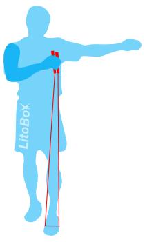longueur-corde-taille